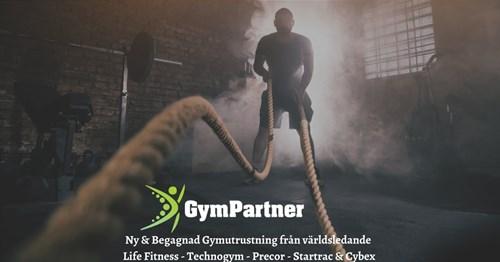 MaXimus The GymPartner