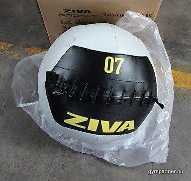 ZIVA Wallballs 4-10kg