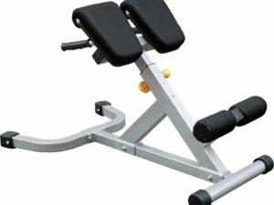 Impulse Fitness Back extension-Ryggresare
