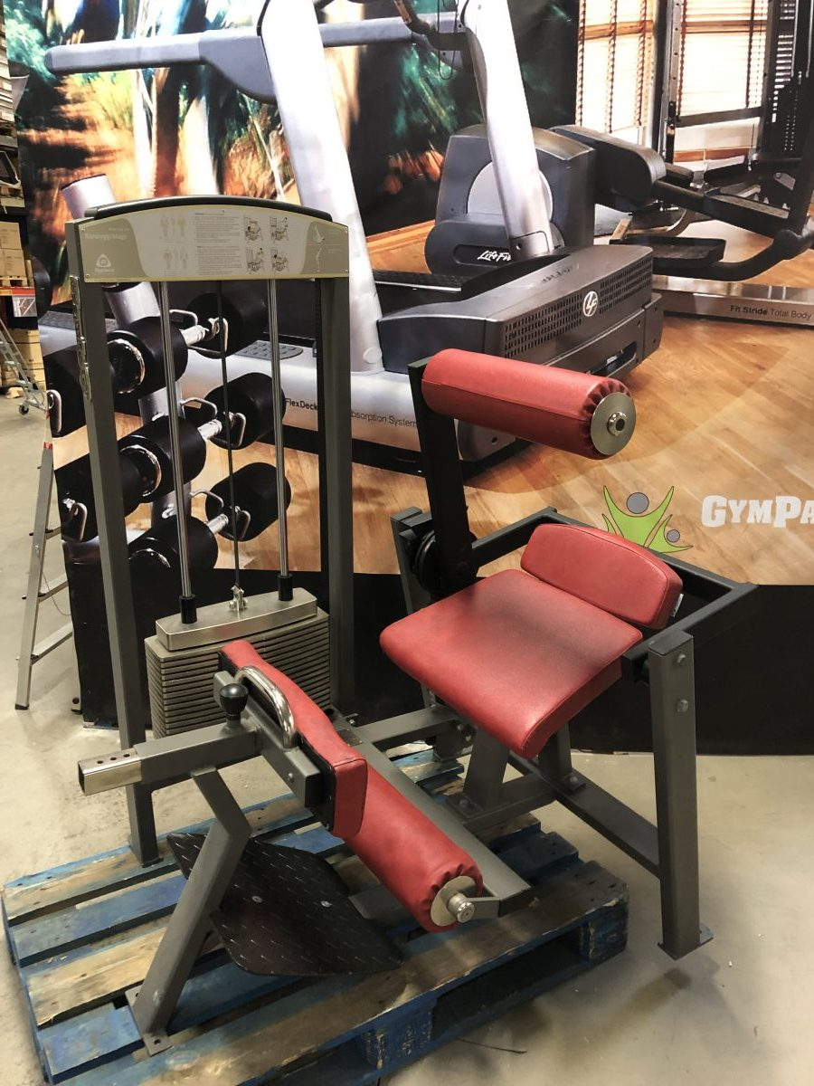 Ab/back Gymleco Mag & Ländryggsmaskin-