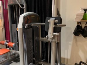 Icarian Precor Chins-Dips-station