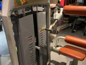 Icarian Precor Back extension