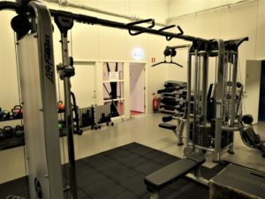 Life Fitness Femstationers Multigym