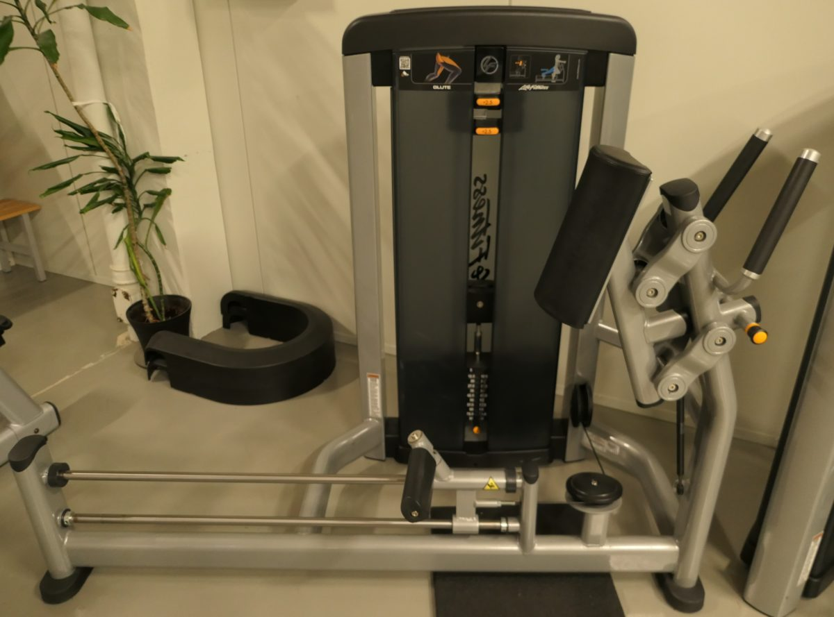 Life Fitness Gluteus Insignia