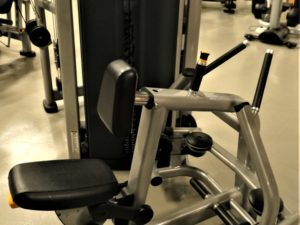 Life Fitness Insignia Row